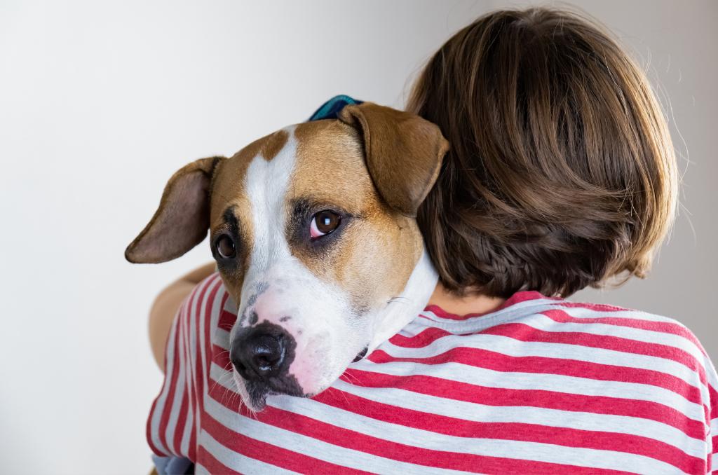 Prepoznavanje znakov bolečine pri psih